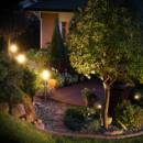 Záhrada a dvor